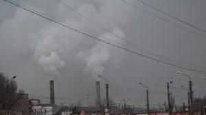 «Кліматичний» EcoQuiz: переможницею стала викладачка екології з Кам'янського