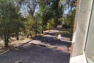 Перша школа в Запоріжжі долучилася до громадського моніторингу